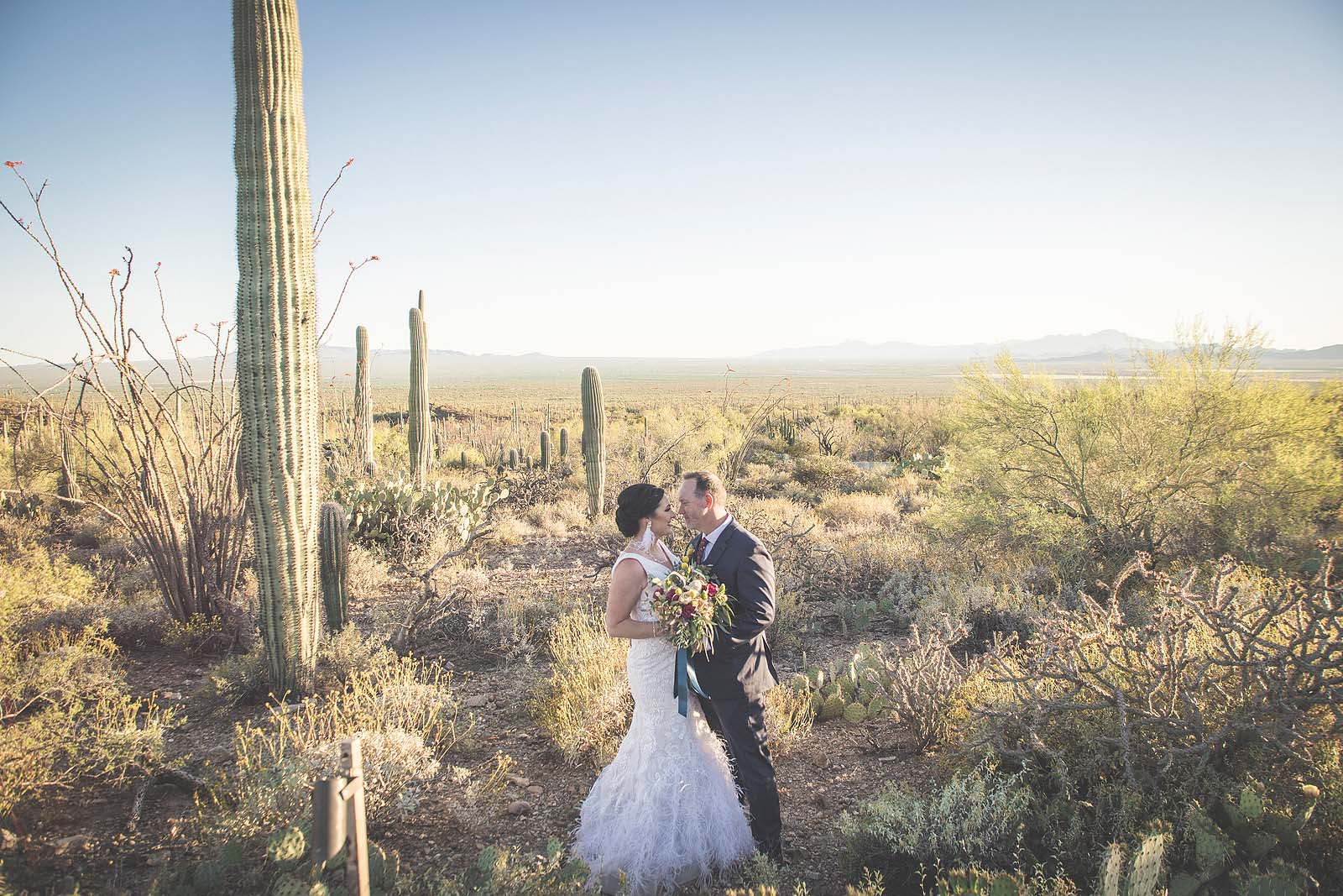 Destination Wedding Sonora Desert Arizona